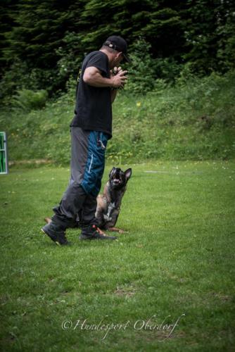HSO Training 27.05.2018-27