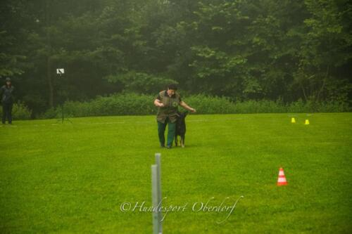 HSO Obedience 25.07.2021-11