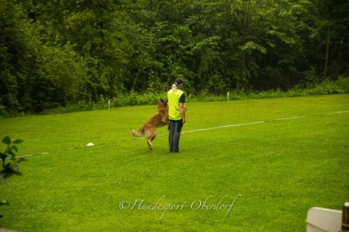 HSO Obedience 25.07.2021-14