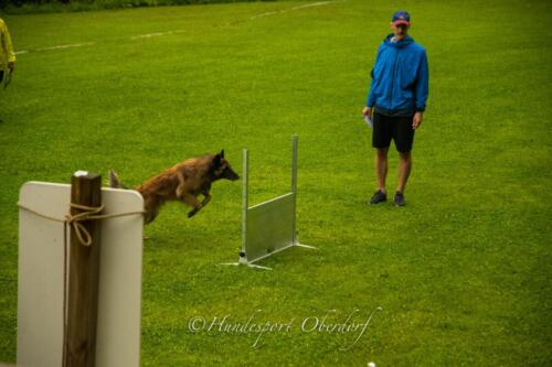 HSO Obedience 25.07.2021-15