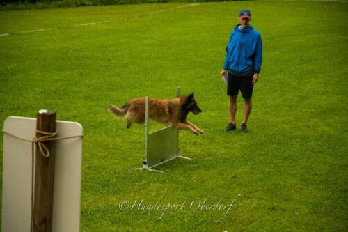 HSO Obedience 25.07.2021-16