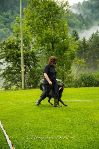 HSO Obedience 25.07.2021-2