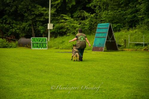 HSO Obedience 25.07.2021-25