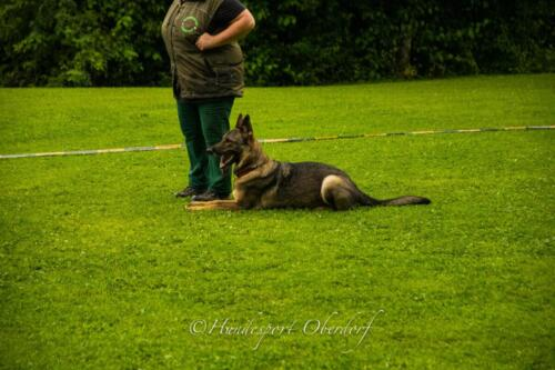 HSO Obedience 25.07.2021-27