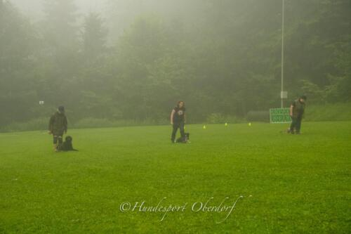 HSO Obedience 25.07.2021-29