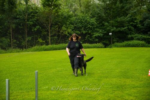 HSO Obedience 25.07.2021-3