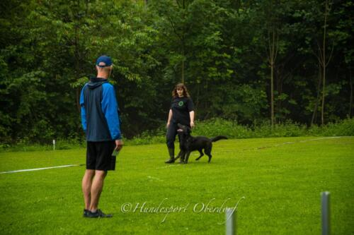 HSO Obedience 25.07.2021-4