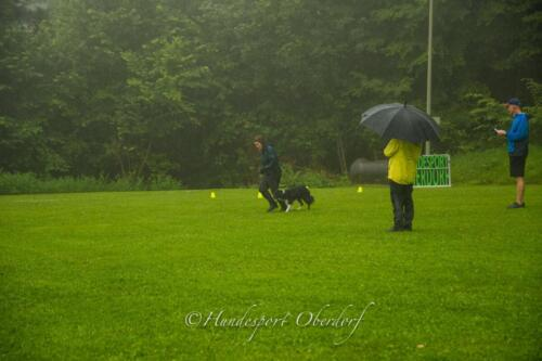 HSO Obedience 25.07.2021-46