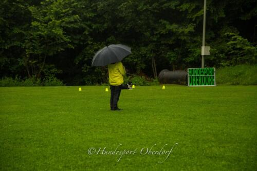 HSO Obedience 25.07.2021-48