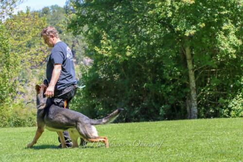 HSO Training 12.07.2020-46