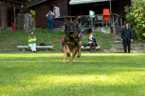 HS Oberdorf Training 30.09.2018-7