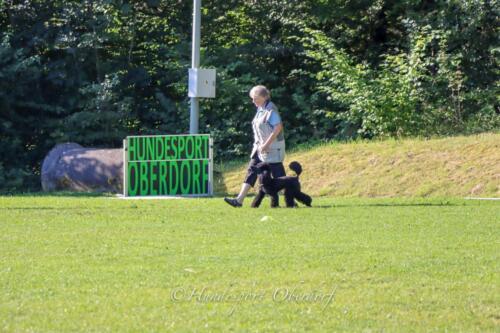 Obedience Beginners 09.08.2020-10