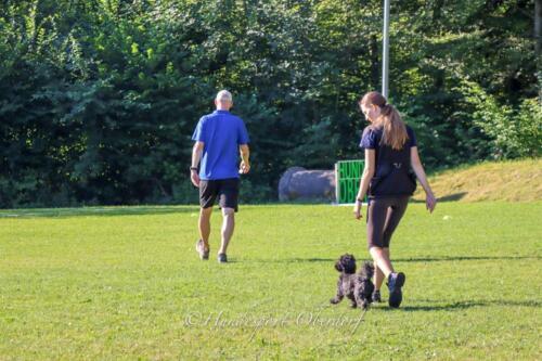 Obedience Beginners 09.08.2020-2