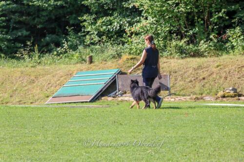Obedience Beginners 09.08.2020-23