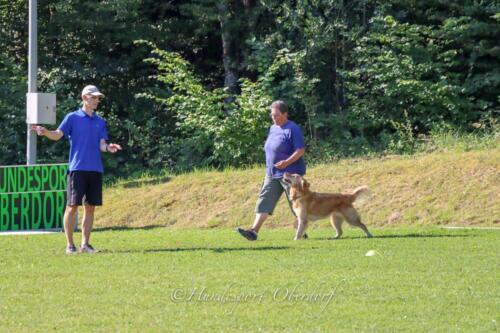 Obedience Beginners 09.08.2020-29