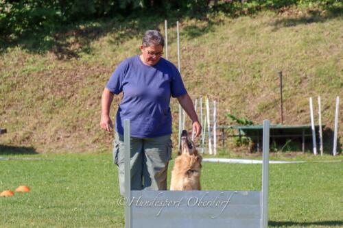 Obedience Beginners 09.08.2020-30