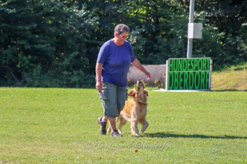 Obedience Beginners 09.08.2020-34