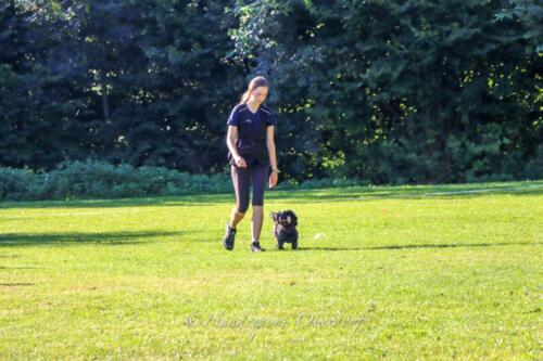 Obedience Beginners 09.08.2020-6