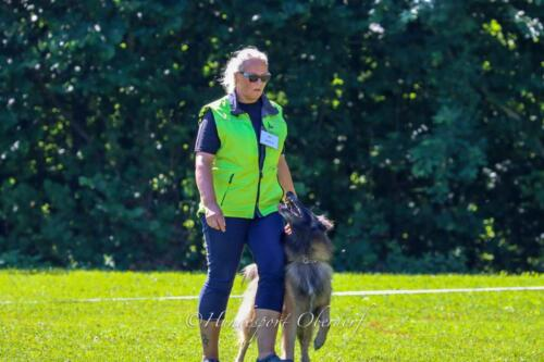 Obedience FCI1 09.08.2020-35