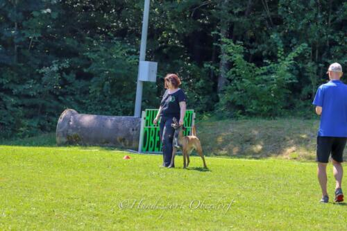 Obedience FCI2 09.08.2020-13