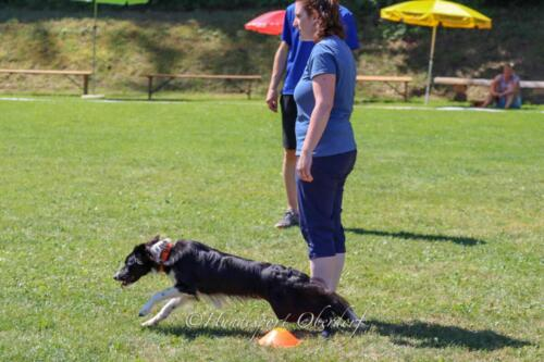 Obedience FCI2 09.08.2020-21