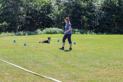 Obedience FCI2 09.08.2020-23