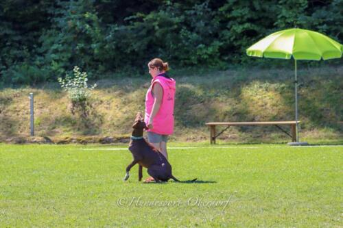 Obedience FCI2 09.08.2020-34