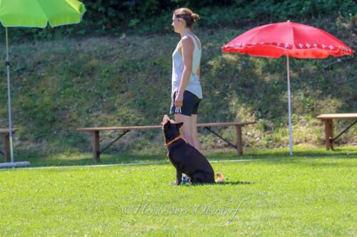 Obedience FCI2 09.08.2020-51