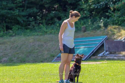 Obedience FCI2 09.08.2020-57