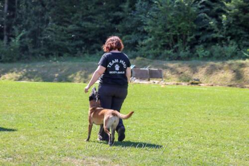 Obedience FCI2 09.08.2020-6